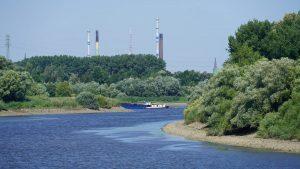 Mündung in die Elbe